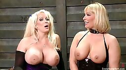 Alura Jenson, Mellanie Monroe - Busty Lesbians Use Anal Toys - fetish femdom