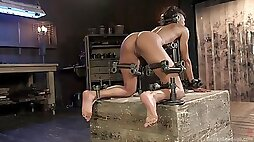 Ebony slut plays rough in full BDSM scenes