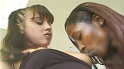 Amateur big breasted black lesbians are fond of eating cooches
